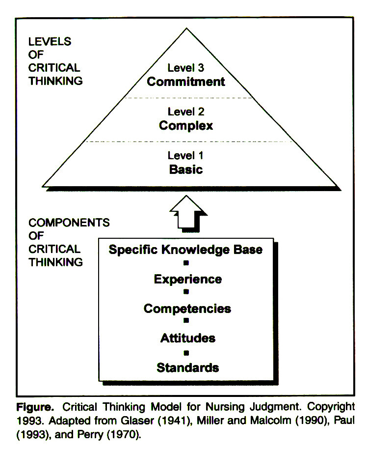 Critical Thinking Model for Nursing Judgment