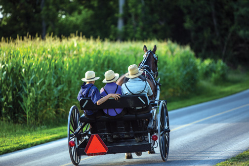 Vaccination of Amish limited 2014 Ohio measles outbreak