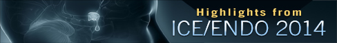 Highlights from ICE ENDO 2014