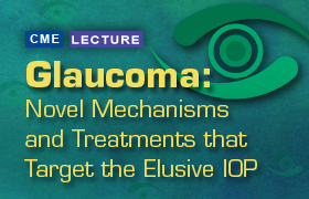 Glaucoma: Novel Mechanisms and Treatments that Target the Elusive IOP