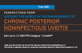 Perspectives From Around the World in the Management of Chronic Posterior Noninfectious Uveitis